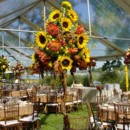 Floral, Decor, Furniture, & Tent