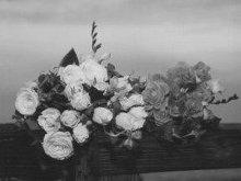 220x220_1248214450079-flowersvideopg
