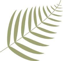 220x220 1354060761079 leaf2