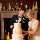 130x130 sq 1465400437649 steph stevens birch wedding cake cutting in the gr