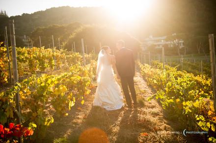 Cheap wedding venues in big sur
