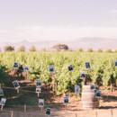 130x130 sq 1386132461852 gainey vineyard wedding photography santa barbara