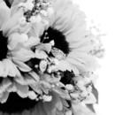 130x130 sq 1452970128412 wasser wedding 00128