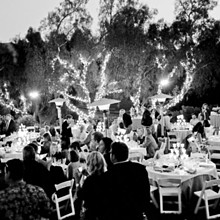 220x220 sq 1280878613164 blackwhitewedding