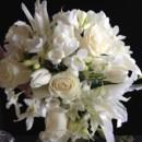 130x130 sq 1373039455190 creamy whites