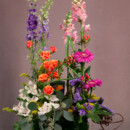 130x130 sq 1393366096533 abq florist 1