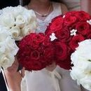 130x130 sq 1526967279 8310fc910a0410d8 1406057044066 silva wedding party bouquet