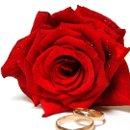 130x130 sq 1336512438473 roseandrings2