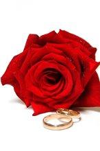 220x220_1336512438473-roseandrings2