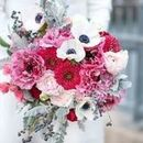 130x130 sq 1497637683 9cddc9ea18492868 red pink bouquet  jessica frey photography