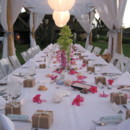 130x130_sq_1412968676369-dining-canopy-with-green-and-pink-flowers