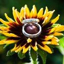 130x130 sq 1235578543010 richter scafide wedding 291