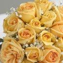 130x130 sq 1241720118421 roses5