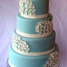 220x220 sq 1283124925625 img1883blueweddingcakewithhydrangeabouquet