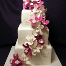 220x220 sq 1310180524555 magentaorchidsweddingcakewithsnowflakes
