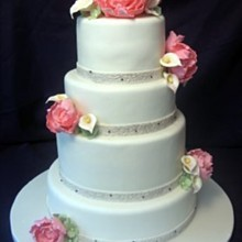 220x220 sq 1310180689354 whiteweddingcakewithpeonybouquets