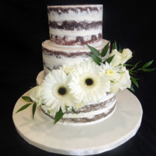 220x220 sq 1509937514975 naked cake with fresh gerbera daisies