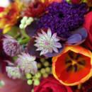 130x130 sq 1478626378210 fhe stylized shoot flowers 0003