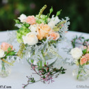 130x130_sq_1386640127986-rose-hydrangea-jasmine-wedding-flower-centerpiece-