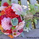 130x130 sq 1386780064564 coral blush dahlia succulent bouquet sonoma weddin