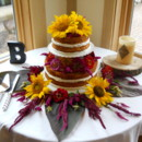 130x130 sq 1416924142461 unfrosted wedding cake