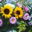 130x130 sq 1357570527762 arborflowers