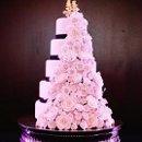 130x130_sq_1362526588015-pink