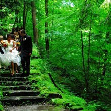 220x220 sq 1329675416606 anatoliphotograffiweddingpartydescendingstairs