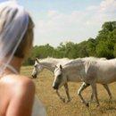 130x130 sq 1231779714748 horseweb