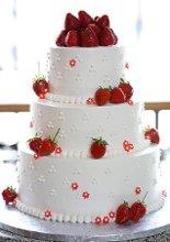 220x220_1231876951015-shortcake