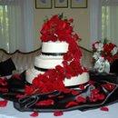 Shaw wedding 7-18-2009
