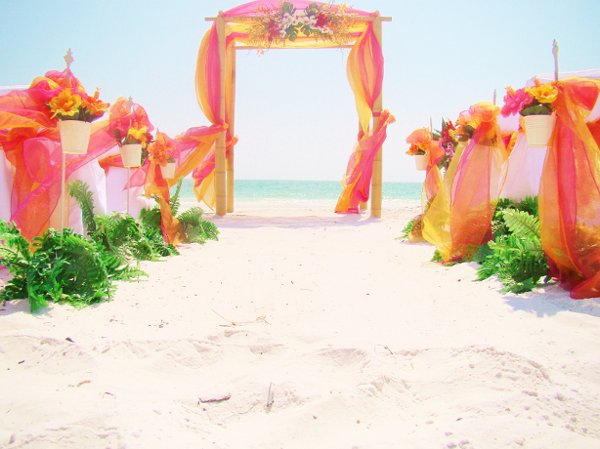 photo 68 of Sand Petal Weddings