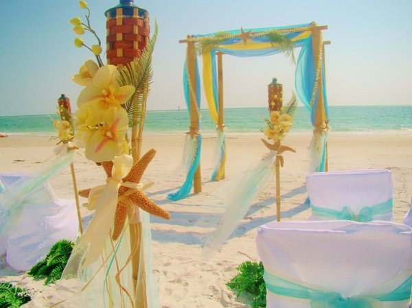 photo 71 of Sand Petal Weddings
