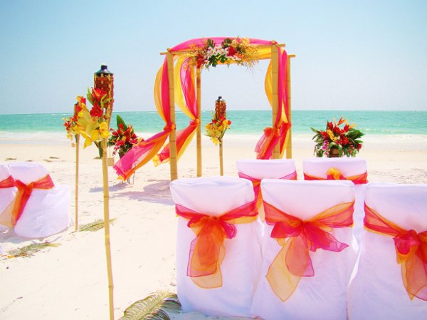 photo 67 of Sand Petal Weddings
