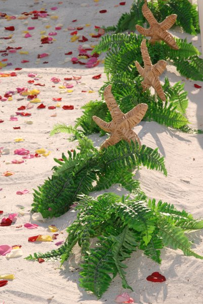 photo 83 of Sand Petal Weddings