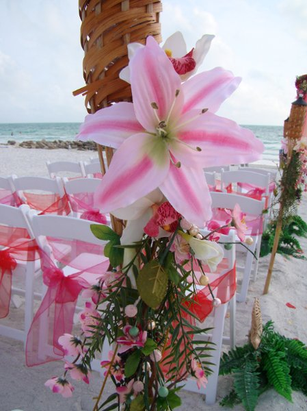 photo 76 of Sand Petal Weddings