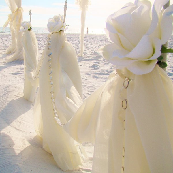 photo 89 of Sand Petal Weddings