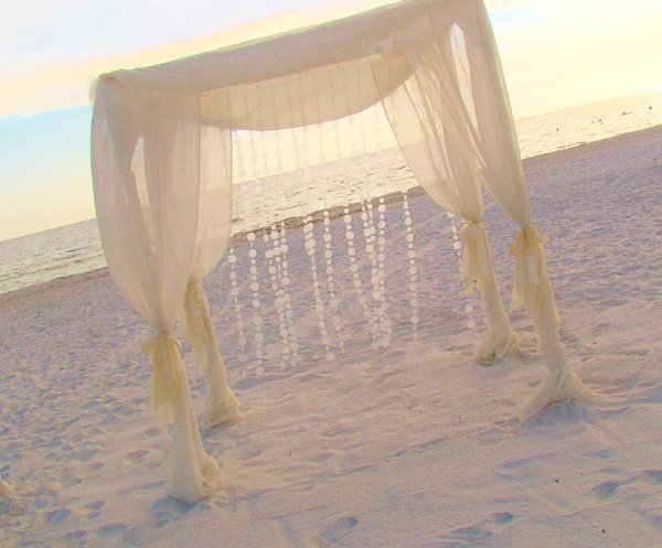 photo 90 of Sand Petal Weddings