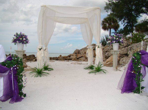 photo 97 of Sand Petal Weddings