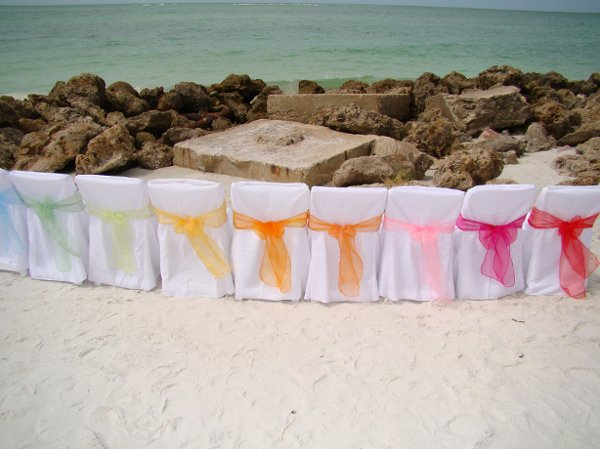 photo 98 of Sand Petal Weddings