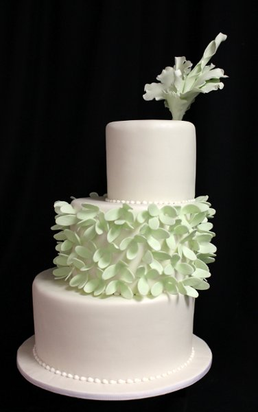 photo 18 of Amanda Oakleaf Cakes