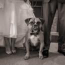 130x130 sq 1480509801538 20clinton hunterdon county nj wedding photographer