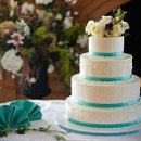 130x130 sq 1294886123850 salvastiffblueweddingcake872010