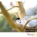 130x130 sq 1336529666103 lovebirds