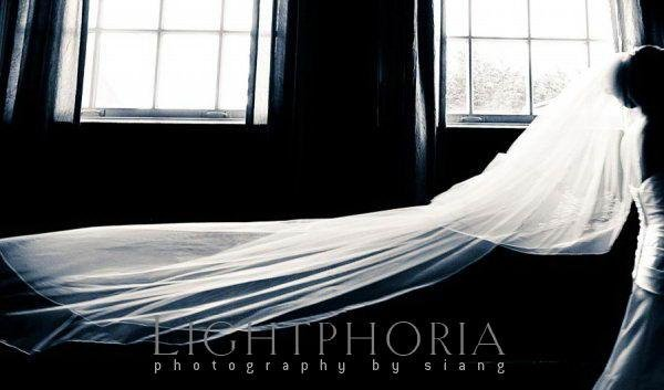photo 4 of Lightphoria