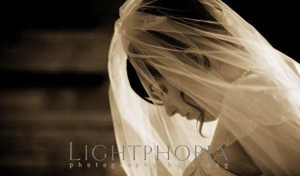photo 6 of Lightphoria