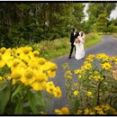 130x130_sq_1234636536956-bridal_flowers_yellow
