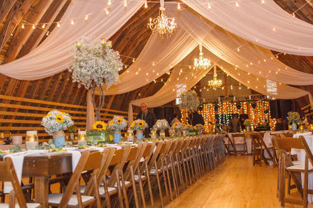 Delaware wedding planners reviews for 47 planners dw fine events junglespirit Images