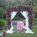 130x130 sq 1326817364780 curtainswithfullflowers