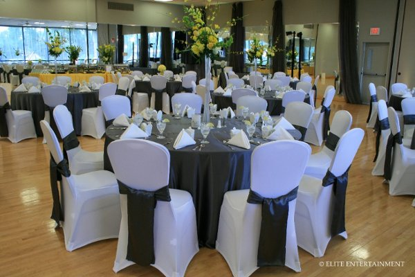 photo 1 of Elite Chair Covers